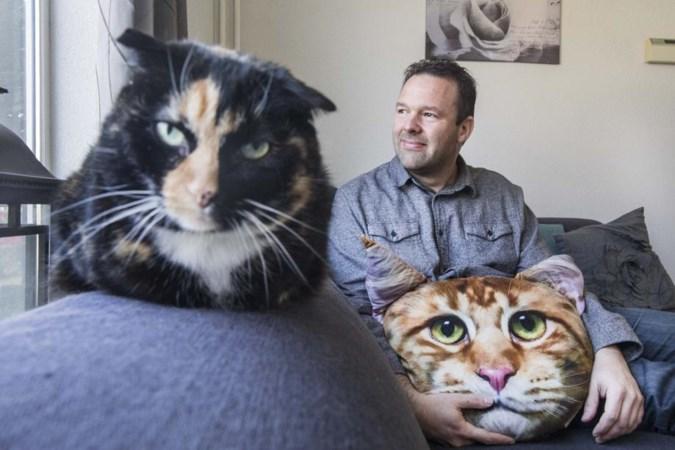 Poezendrama: katten zwaar mishandeld of dood teruggevonden
