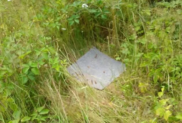 Vreemde stukken tapijt in de natuur gezien? Laten liggen!