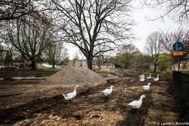 Weerts bouwbedrijf tekent voor herinrichting Tapijn Maastricht