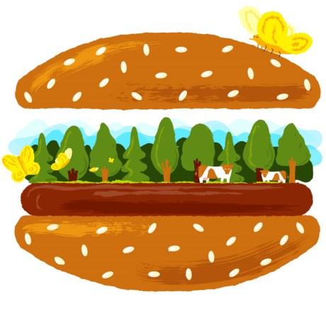 De hamburger van kweekvlees komt er snel aan