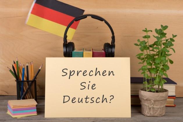 'Limburger moet beter Duits en Frans spreken'