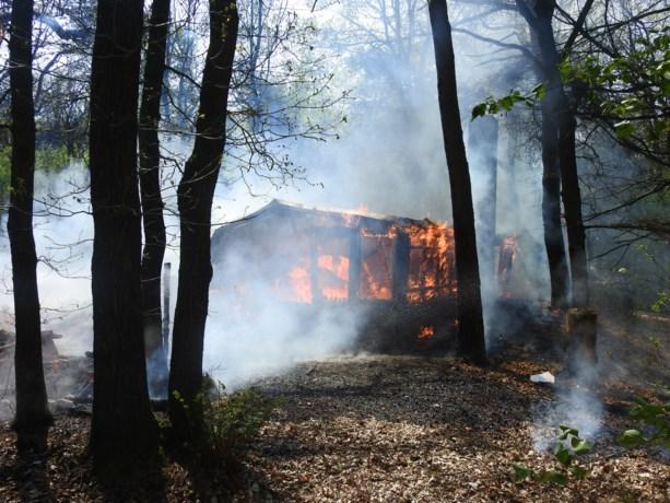 Bosbrand blijkt uitslaande brand in vakantiewoning
