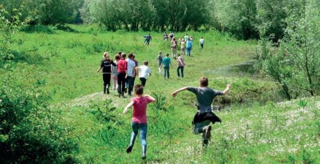 ARK Natuurontwikkeling verzorgt een veldles langs de oevers van de Maas