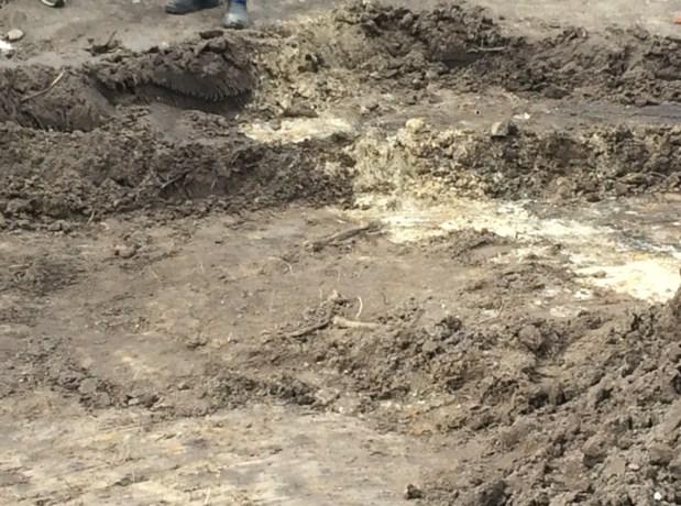 Skelet zonder hoofd en onderbenen gevonden bij opgraving