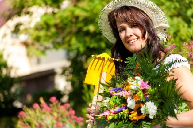 Tips en tricks voor onderhoudsvrije tuin