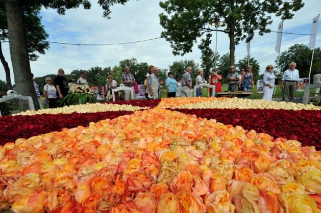Rozenfestival Lottum: dit jaar ook rozen proeven