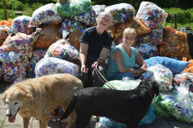 Zakken vol flessendoppen voor een 'hondenbaan'