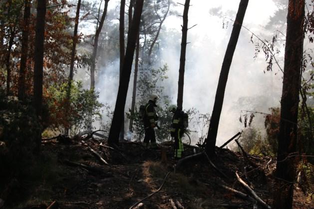 Opnieuw bosbrand in Overloon