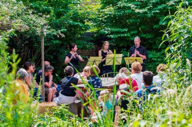 Klassieke muziek op intieme locaties in het Jekerkwartier