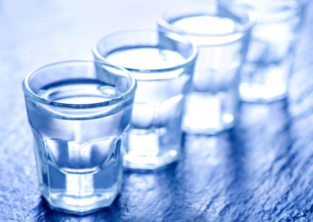 Culinaire creatievelingen presenteren Wyckse Wodka