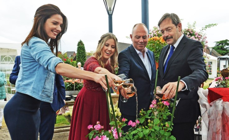 De roos Renée van Wegberg smaakt naar frambozen