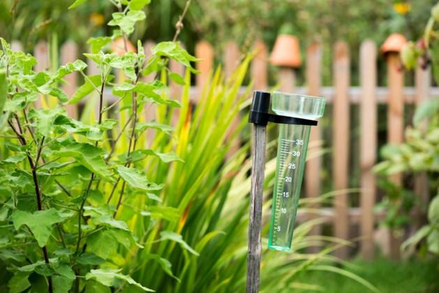 Nederland beleeft droogste juni in 56 jaar