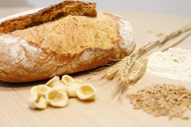 Nederlandse wielrenners ontbijten met brood uit Maastricht