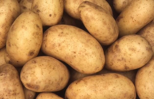 NVWA controleert vanuit de lucht op naleving beregeningsverbod aardappeltelers