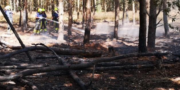 Brandweer rukt uit voor brand bij Beegderheide