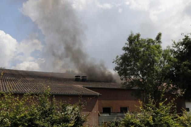 Geen asbest vrijgekomen bij brand in Sevenum