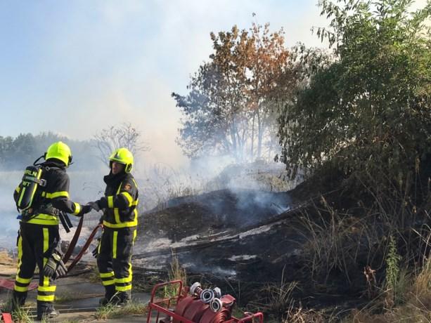 Stuk natuur uitgebrand in Kelpen-Oler