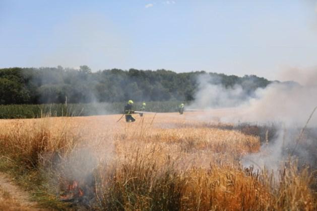 Kosten brandweer hoger door extreme droogte