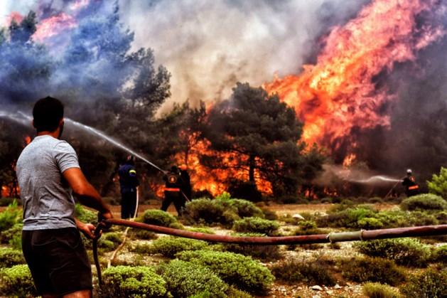 Enkele Nederlanders ontvluchtten bosbranden