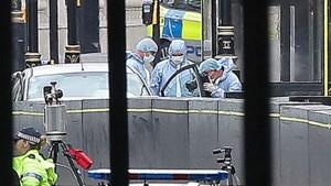 Bestuurder aanslag Londen aangeklaagd voor moord