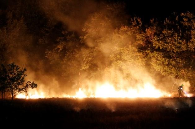 Grote heidebrand in Molenhoek