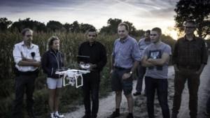 Met een drone op zwijnenjacht