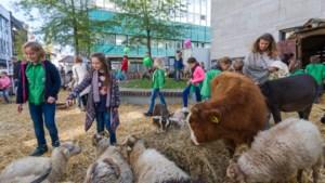 Kidsweekend in Heerlen-Centrum