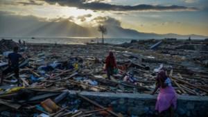 Nationale actiedag voor Sulawesi
