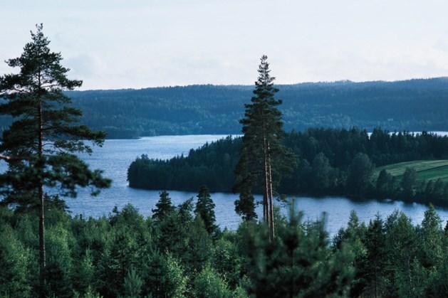 Zweeds meisje (8) vist duizend jaar oud zwaard op uit meer