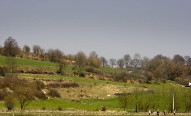 Te weinig beleid hittestress op Zuid-Limburgs platteland