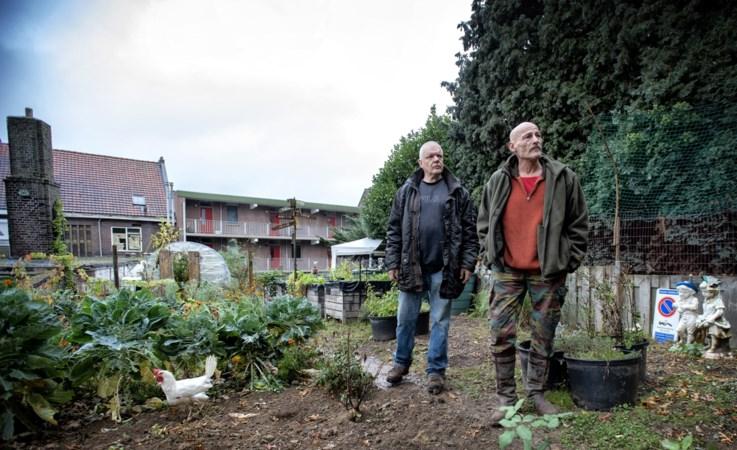 'Blijven komen naar de groentetuin, al moet het op de wenkbrauwen'