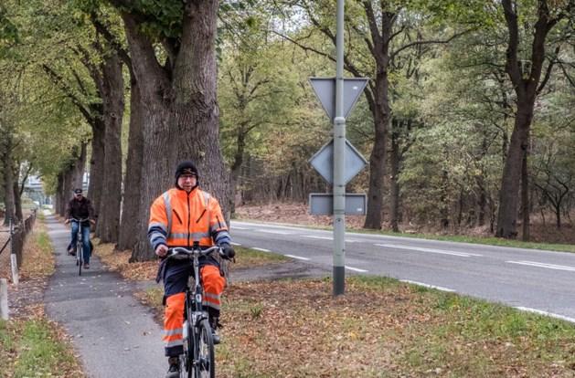 Bomen blijven staan, fietsers krijgen eigen rijbaan langs Hoofdstraat in Heijen