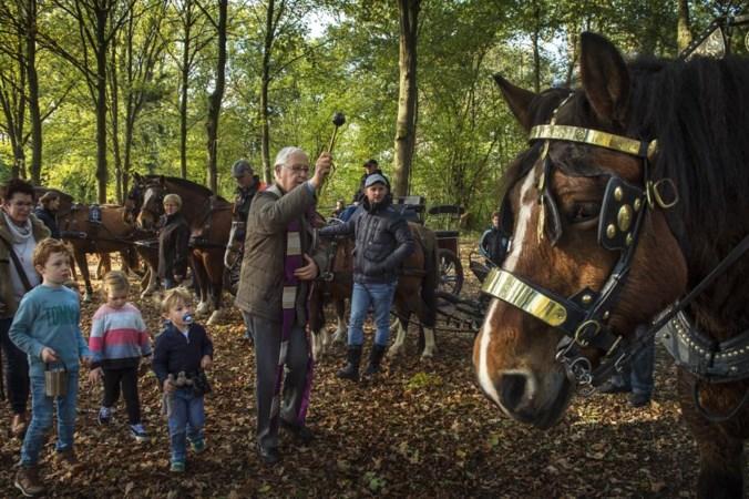 Kruidenbroodjes en zegeningen voor honden en paarden