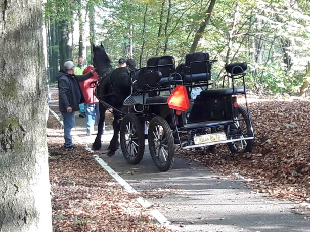 Paard met rijtuig slaat op hol, inzittenden komen er goed vanaf