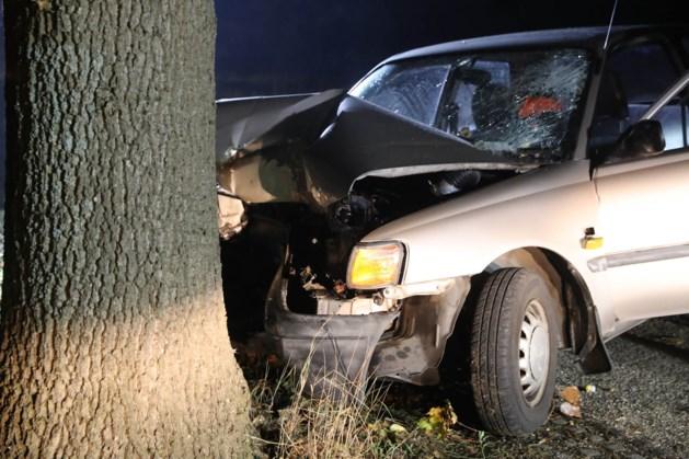 Automobiliste botst tegen boom en raakt gewond