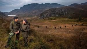 Regenjasgrap mariniers loopt uit de hand: stroopwafelbakker regelt nu 2400 koeken