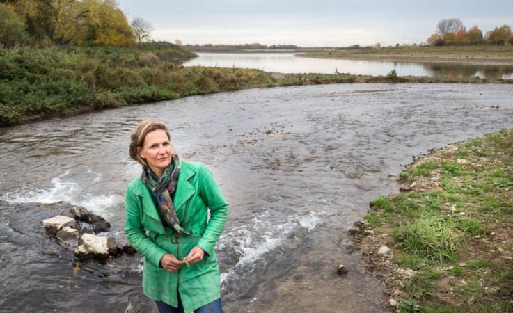 Sluizen gaan open: 'Hopen dat trekvissen terug naar Limburg komen'