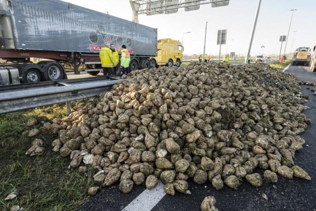'Trucker moest uitwijken voor botsende auto op vangrail'
