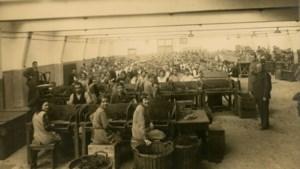 Eerste boek over historie Tegelse sigarenindustrie