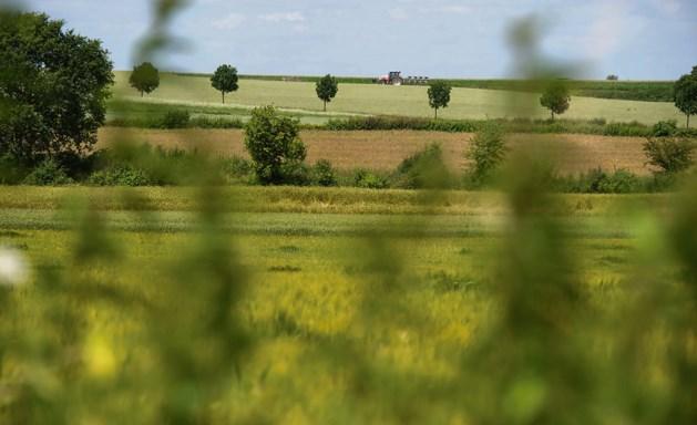 Minder agrarische grond, meer natuur en bedrijventerrein