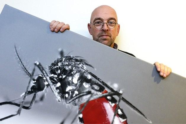 Malariabestrijder Bart Knols wint Marc Cornelissen Brightlands Award