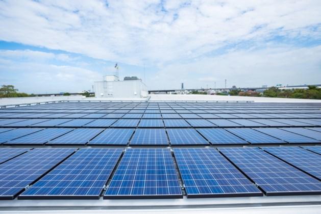 14.000 zonnepanelen op Bergense bedrijfsdaken