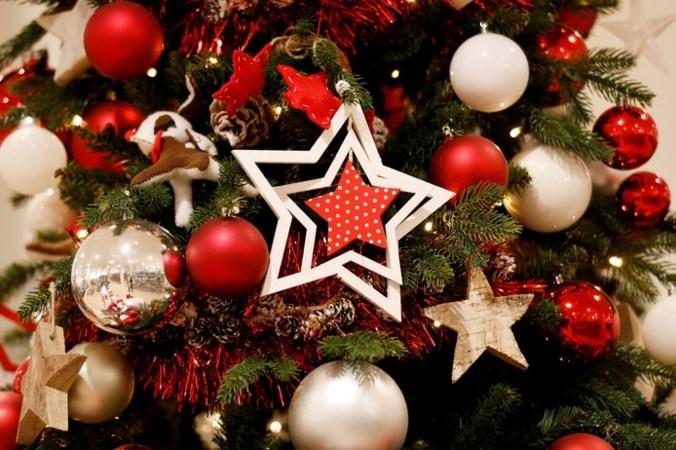 Kerstboom kopen? Dit is wat je moet weten