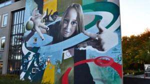 Nieuwe mural aan onderwijsboulevard Heerlen