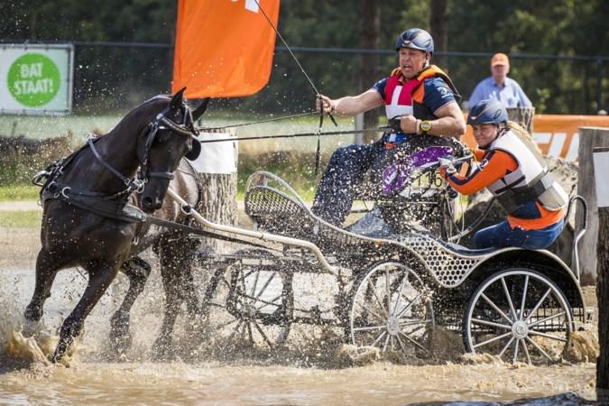 Paardenmekka Kronenberg groeit explosief