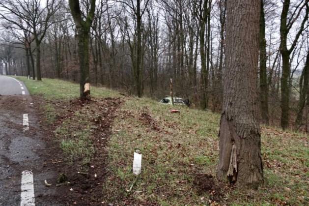 Bestuurder raakt van de weg en belandt in bos
