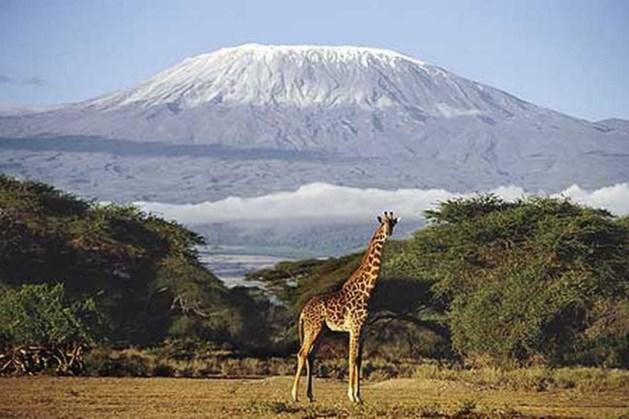 Molenhoekse vertelt over Dak van Afrika