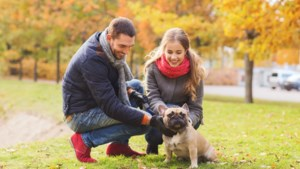 Controle hondenbelasting van start in Vaals
