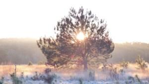 IVN houdt winterwandeling in Landgraaf
