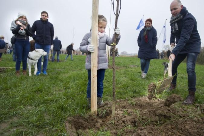 Landgraaf overweegt alsnog aanplant tweede levensbomenbos
